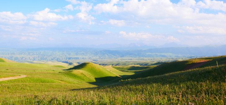 De l'Altai russe au sud du Kazakhstan. Du 29 juin au 17 juillet.